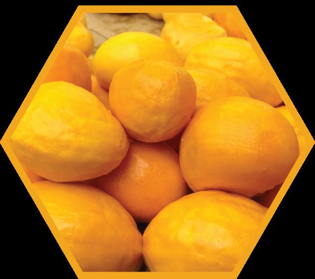 Imagem fruta pequi